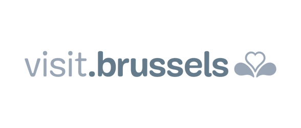 D2 - Analytics clients: Brussels logo