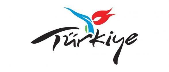 D2 - Analytics clients Turkey logo
